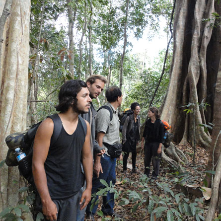 2 Days Jungle trekking and Elephant adventure Tour