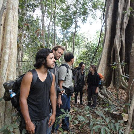 2 Days Jungle trekking and Elephant adventure Tour